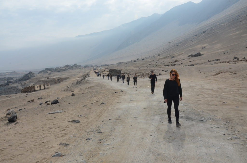 Atacama Desert on the way to Guano Mines (c) Roxane Bovet