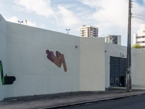 Mural created by Ana Roldán, in partnership with the Brazilian artist Americo Filho_©Thercles_Silva