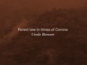 Forest Law in Times of Corona © Ursula Biemann